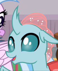 Size: 624x764 | Tagged: changedling, changeling, cropped, female, ocellus, offscreen character, open mouth, safe, screencap, silverstream, snipping tool, solo focus, spoiler:s08e15, the hearth's warming club