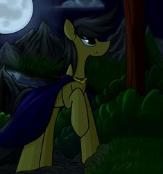Size: 5150x5482 | Tagged: absurd res, artist:ruiont, cloak, clothes, earth pony, full moon, hooves, male, moon, night, oc, oc only, pony, raised hoof, safe, solo, stallion, tree