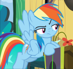 Size: 734x695 | Tagged: cropped, female, flying, hooves on hips, leaning, lidded eyes, pegasus, pony, rainbow dash, rainbow dash is not amused, raised eyebrow, safe, screencap, snipping tool, solo, spoiler:s08e20, the washouts (episode), unamused