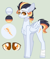 Size: 840x992 | Tagged: safe, artist:nocturnal-moonlight, oc, oc:spectrum rays, pegasus, pony, male, offspring, parent:soarin', parent:spitfire, parents:soarinfire, reference sheet, simple background, solo, stallion