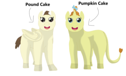 Size: 5030x3030 | Tagged: artist:lynnthenerdkitty, bow, cake twins, looking at you, male, nightmare fuel, older, pegasus, pony, pound cake, pumpkin cake, safe, staring into your soul, uncanny valley, unicorn, wat