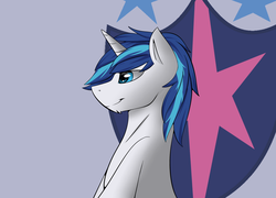 Size: 2500x1800 | Tagged: artist:snowstormbat, chin fluff, cutie mark, looking offscreen, male, safe, shining armor, simple background, smiling, solo, stallion, unicorn