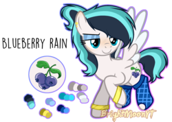 Size: 1059x755 | Tagged: safe, artist:jxst-roch, oc, oc only, oc:blueberry rain, pegasus, pony, bracelet, clothes, ear piercing, earring, eyeshadow, female, flying, jewelry, looking at something, makeup, mare, multicolored hair, piercing, raised hoof, reference sheet, signature, simple background, smiling, smirk, socks, solo, spread wings, transparent background, two toned wings, wings