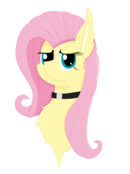 Size: 1936x2592 | Tagged: artist:randomelight, bust, chest fluff, choker, chokershy, fluttershy, pegasus, pony, safe, simple background, transparent background