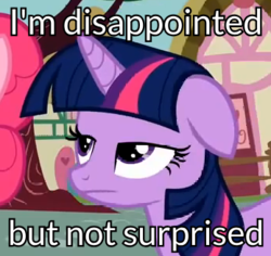 Size: 347x328 | Tagged: safe, edit, edited screencap, screencap, pinkie pie, twilight sparkle, earth pony, pony, unicorn, the mysterious mare do well, :|, caption, cropped, disappointed, duo, female, image macro, lidded eyes, mare, meme, reaction image, text, unamused, unicorn twilight