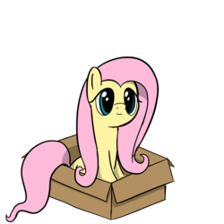 Size: 3700x3700 | Tagged: artist:czu, box, cute, female, fluttershy, mare, pegasus, pony, pony in a box, safe, shyabetes, simple background, sitting