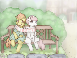 Size: 1000x750 | Tagged: artist:lavilovi, bench, clothes, female, lesbian, nurse redheart, outdoors, pony, safe, scarf, shared clothing, shared scarf, shipping, sitting, smiling, spitfire