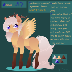 Size: 3000x3000 | Tagged: antlers, artist:timser_, clothes, female, oc, oc:antler pone, oc only, pony, reference sheet, safe, socks, solo, wings