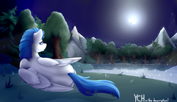 Size: 3450x2000 | Tagged: safe, artist:lilrandum, oc, pony, commission, grass, lake, moon, mountain, solo, stars, tree, ych example, your character here