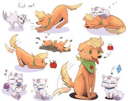 Size: 1900x1500 | Tagged: safe, artist:tcn1205, applejack, rarity, cat, dog, worm, apple, appledog, catified, cute, daaaaaaaaaaaw, dogified, female, food, friendshipping, jackabetes, mud, pets, playing, raribetes, raricat, rarijack, shipping, simple background, sleeping, species swap, weapons-grade cute, white background