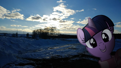 Size: 1280x721 | Tagged: artist:naijiwizard, clothes, cloud, cloudy, edit, female, forest, head, head only, irl, looking at you, mare, photo, ponies in real life, pony, road, russia, safe, scarf, smiling, snow, solo, sun, twilight sparkle, unicorn, winter, winter wrap up
