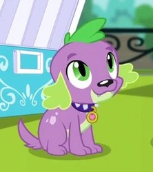 Size: 237x267 | Tagged: safe, screencap, spike, spike the regular dog, dog, dance magic, equestria girls, spoiler:eqg specials, cropped, cute, male, paws, smiling, solo, spikabetes, spike's dog collar, tail