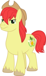Size: 3000x4968 | Tagged: artist:cloudyglow, bright mac, pony, safe, solo, the perfect pear, vector