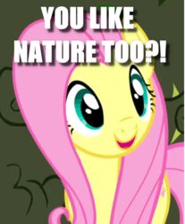 Size: 429x519 | Tagged: caption, cropped, cute, edit, edited screencap, exclamation point, fluttershy, image macro, interrobang, question mark, safe, screencap, shyabetes, solo, text, the return of harmony