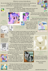 Size: 1200x1777 | Tagged: amethyst star, artist:misteraibo, background pony, diamond mint, dinky hooves, feels, female, fine line, four step, immortality blues, lemon hearts, lemony gem, liza doolots, male, mare, marey fetlock, maxie, petunia, pony, princess celestia, safe, seafoam, sea swirl, sparkler, stallion, text, tootsie flute, unicorn