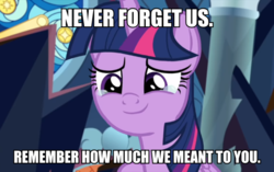Size: 600x376 | Tagged: alicorn, bronybait, crying, edit, edited screencap, end of ponies, female, impact font, mare, pony, positive ponies, safe, screencap, solo, spoiler:s09e01, spoiler:s09e02, the beginning of the end, twilight sparkle, twilight sparkle (alicorn)