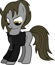 Size: 1126x1329 | Tagged: safe, artist:chipmagnum, oc, oc:jake, pegasus, pony, clothes, hoodie, male, simple background, solo, stallion, transparent background