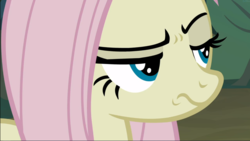 Size: 1667x939 | Tagged: safe, screencap, mean fluttershy, pegasus, pony, the mean 6, clone, close-up, female, lidded eyes, mare, raised eyebrow, solo