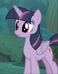 Size: 741x940 | Tagged: alicorn, clone, cropped, mean twilight sparkle, safe, screencap, solo, the mean 6
