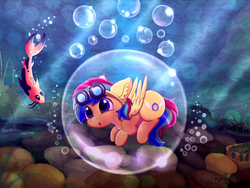 Size: 2100x1575 | Tagged: safe, artist:zobaloba, oc, oc only, oc:zenith spark, fish, pegasus, pony, bubble, commission, complex background, curiosity, cute, digital art, full body, goggles, male, nature, paint tool sai, plants, rock, solo, underwater, water, ych result