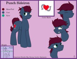Size: 3895x3000   Tagged: safe, artist:candel, oc, oc:punch sideiron, earth pony, pony, angry, happy, looking at you, male, reference sheet, size chart, size comparison, tired