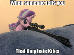 Size: 2048x1536 | Tagged: safe, edit, starlight glimmer, pony, ar15, caption, gun, image macro, irl, kite, photo, plushie, snipelight glimmer, text, that pony sure does love kites, this will end in communism, weapon