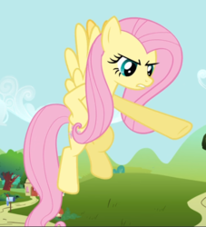 Size: 854x939 | Tagged: safe, screencap, fluttershy, pegasus, pony, putting your hoof down, cropped, female, fluttershy is not amused, flying, hooves on hips, mare, pointing, raised hoof, solo, spread wings, unamused, underhoof, wings
