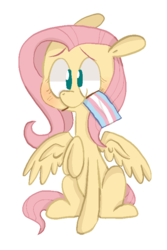 Size: 515x772 | Tagged: safe, artist:pinkiespresent, fluttershy, pegasus, pony, blushing, cute, female, floppy ears, gender headcanon, headcanon, lgbt, lgbt headcanon, mare, mouth hold, no pupils, pride, pride flag, raised hoof, shyabetes, simple background, sitting, smiling, solo, spread wings, transgender pride flag, transparent background, wings