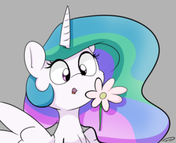 Size: 2087x1696 | Tagged: alicorn, artist:taurson, cheek fluff, cute, cutelestia, female, flower, gray background, mare, pony, princess celestia, safe, simple background, solo