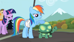 Size: 1920x1080 | Tagged: safe, screencap, owlowiscious, rainbow dash, tank, twilight sparkle, owl, may the best pet win, injured wing, mid-blink screencap, scratches