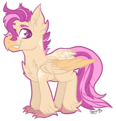 Size: 400x417 | Tagged: safe, artist:illusionaryprince, oc, oc only, oc:sandy cove, hippogriff, pony, adopted oc, beak, claws, hippogriff oc, male, next generation, parent:scootaloo, parent:terramar, pink eyes, pink hair, smiling, smirk, solo, stallion, tan body, wings