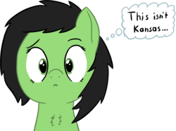 Size: 2802x2100 | Tagged: artist:craftycirclepony, bust, chest fluff, confused, cute, female, filly, frown, kansas, looking at you, oc, oc:filly anon, oc only, safe, shrunken pupils, simple background, solo, the wizard of oz, thought bubble, transparent background