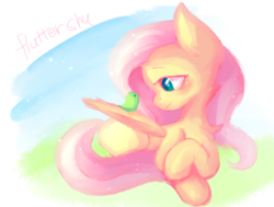 Size: 775x587 | Tagged: artist:dddreamdraw, bird, chest fluff, cute, female, fluttershy, mare, missing cutie mark, neck fluff, pegasus, pony, profile, prone, safe, shyabetes