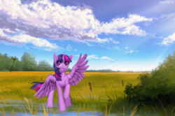 Size: 1503x1000 | Tagged: alicorn, artist:margony, female, looking at you, outdoors, pony, power line, safe, scenery, twilight sparkle, twilight sparkle (alicorn), ych result