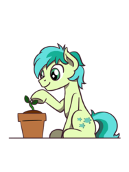 Size: 774x1032   Tagged: safe, artist:flutterluv, sandbar, earth pony, pony, cute, earth day, earth(pony) day, plant, plant pot, sandabetes, simple background, sitting, transparent background
