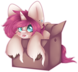 Size: 719x666 | Tagged: safe, artist:munxii, oc, oc only, oc:tarot, classical unicorn, pony, unicorn, :p, big ears, box, cloven hooves, cute, ear piercing, female, floppy ears, horn, leonine tail, looking up, mare, piercing, pony in a box, silly, simple background, tongue out, transparent background, unshorn fetlocks
