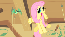 Size: 1280x720 | Tagged: safe, screencap, fluttershy, hummingway, hummingbird, pony, a bird in the hoof