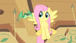 Size: 1280x720 | Tagged: safe, screencap, fluttershy, hummingway, hummingbird, pony, a bird in the hoof