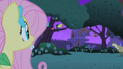 Size: 1280x720 | Tagged: safe, screencap, fluttershy, bird, keel-billed toucan, monkey, pony, spider monkey, toucan, wallaby, wallaroo, the best night ever, apple tree, canterlot gardens, female, mare, tree