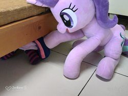 Size: 2048x1536   Tagged: safe, artist:nekokevin, starlight glimmer, twilight sparkle, alicorn, pony, unicorn, series:nekokevin's glimmy, 4de, caught, clothes, female, hide and seek, hiding, irl, mare, open mouth, photo, plushie, raised hoof, sitting, size difference, smiling, socks, starlight's little twibird, striped socks, twilight sparkle (alicorn)