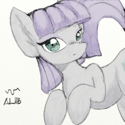 Size: 1000x1000 | Tagged: artist:achmeddb, earth pony, female, looking at you, mare, maud pie, pale color, pony, safe, signature, simple background, soft color, solo, white background