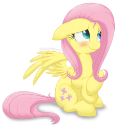 Size: 1000x1009 | Tagged: safe, artist:littlehybridshila, fluttershy, pegasus, pony, blushing, cute, female, floppy ears, looking away, looking up, mare, shy, shyabetes, simple background, sitting, smiling, solo, spread wings, stray strand, three quarter view, transparent background, wings