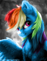 Size: 3529x4600 | Tagged: safe, artist:gaelledragons, artist:skittle_cuddler, color edit, edit, rainbow dash, pony, colored, female, half body, looking at you, signature, smiling, solo, spread wings