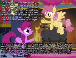 Size: 1197x918 | Tagged: safe, edit, edited screencap, screencap, berry punch, berryshine, dizzy twister, orange swirl, earth pony, pegasus, pony, background pony, bible verse, cider, drunk, duo, female, flying, grin, hoof hold, hooves, ladle, mare, mug, religion, smiling, solo, spread wings, tankard, text, wall of text, wings