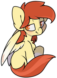 Size: 1736x2362 | Tagged: safe, artist:spoopygander, oc, oc only, oc:render point, pegasus, pony, bedroom eyes, blushing, chest fluff, colored wings, cute, happy, looking at you, looking over shoulder, male, multicolored hair, multicolored wings, raised eyebrow, raised eyebrows, smiling, smug, spread wings, stallion, wings