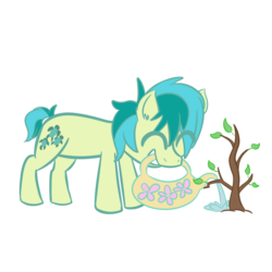 Size: 700x700 | Tagged: artist:provider-of-art, cute, ear fluff, earth pony, eyes closed, mouth hold, pony, safe, sandabetes, sandbar, sapling, simple background, solo, spoiler:s09e03, transparent background, tree, uprooted, watering can