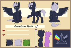 Size: 2800x1900 | Tagged: safe, artist:shiro-roo, oc, oc:quantum flash, alicorn, pony, alicorn oc, cute, male, reference sheet, spread wings, wings