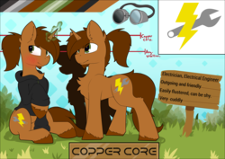 Size: 7936x5628 | Tagged: safe, artist:beardie, oc, oc only, oc:copper core, pony, unicorn, abstract background, beard, blushing, clothes, cutie mark, facial hair, goggles, grass, hoodie, magic, male, ponytail, reference sheet, sign, sitting, stallion, tall, unshorn fetlocks