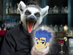 Size: 1032x774 | Tagged: alcohol, cocktail glass, equestria girls, flash sentry, glow, irl, lemur, photo, safe, wat, wine, wine bottle
