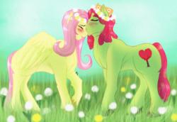 Size: 1600x1100   Tagged: safe, artist:anxiousshadowpetals, fluttershy, tree hugger, pony, blushing, female, floral head wreath, flower, flower in hair, flutterhugger, kissing, lesbian, shipping, wreath